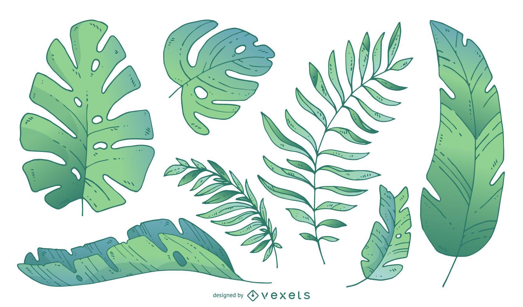 Folhas de palmeira em tons gradientes