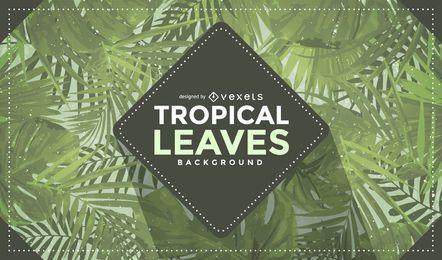 Fondo de hojas tropicales con insignia