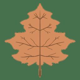 Hoja de otoño marrón aislada