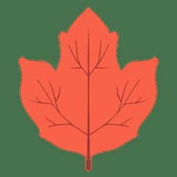Folha de outono vermelha isolada