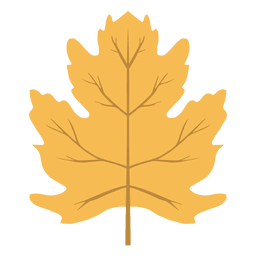 Hoja de otoño amarillo aislado