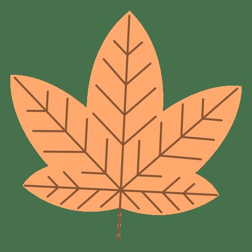 Orange autumn maple leaf