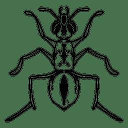 Traço de formiga