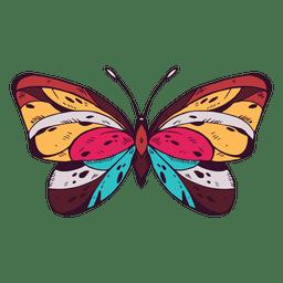 Schmetterling gefärbt