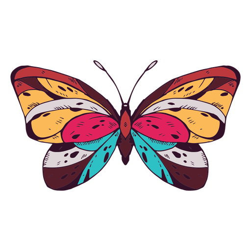 Schmetterling gefärbt Transparent PNG