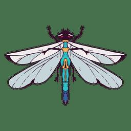 Libelle Abbildung