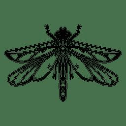 Libellenanschlag