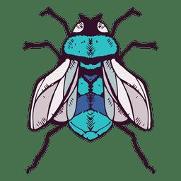 Ilustración de la mosca