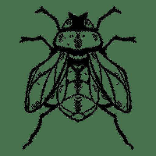 Fly stroke Transparent PNG