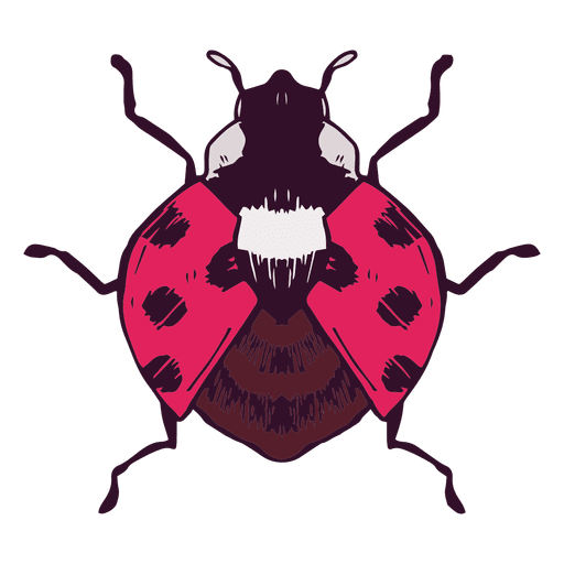 Ladybug illustration Transparent PNG