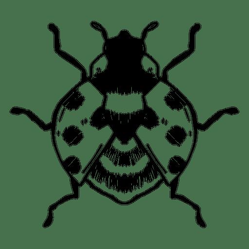 Ladybug stroke Transparent PNG
