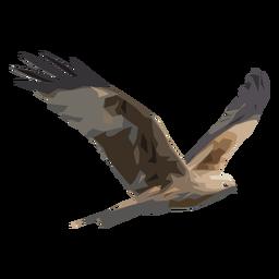 Ilustración de halcón