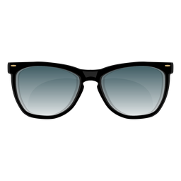Black frame wayfarer sunglasses