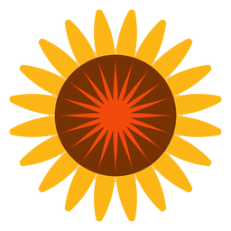 Flat isolated sunflower head icon