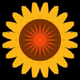 Flat isolated sunflower head icon