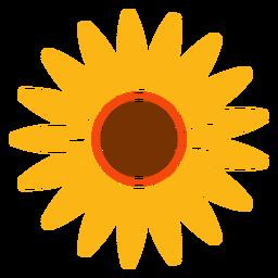 Flat sunflower head illustration
