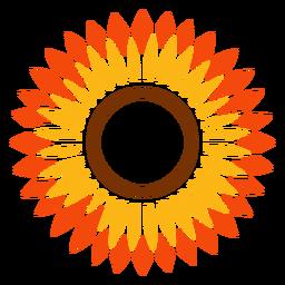 Gráfico de vetor de cabeça de girassol plano