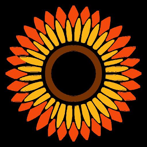 Flat sunflower head vector graphic