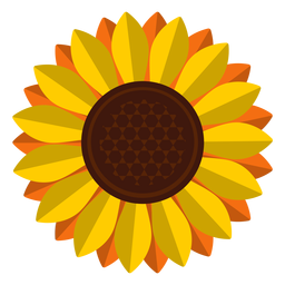 Isolated sunflower head clipart
