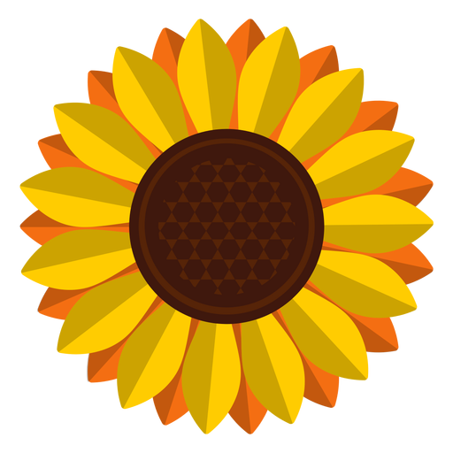 Isolated Sunflower Head Clipart Transparent Png Svg Vector File