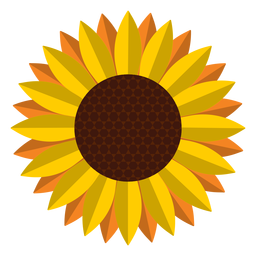 Isolated sunflower head graphic