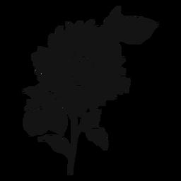 Sonnenblume graues Symbol