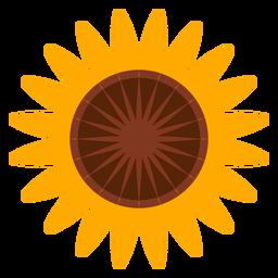 Sonnenblume Kopf Clipart