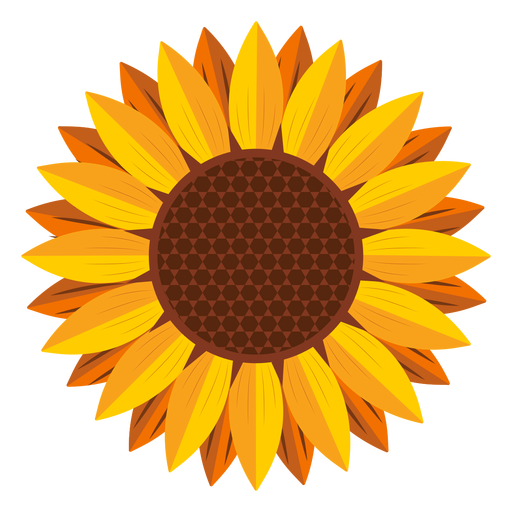 Sunflower head graphic Transparent PNG