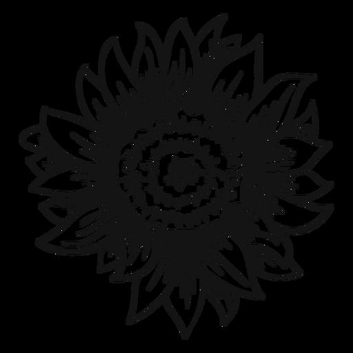Sunflower head stroke Transparent PNG