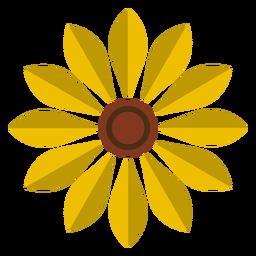 Gráfico de vector de cabeza de girasol