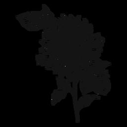 Ícone de traçado de girassol