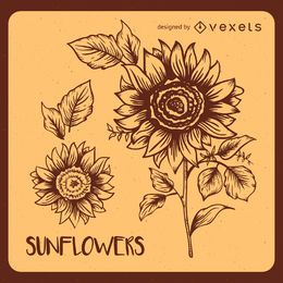 Retro sunflower illustrations