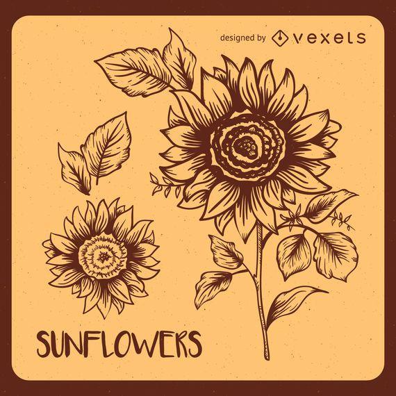 Retro sunflower illustrations