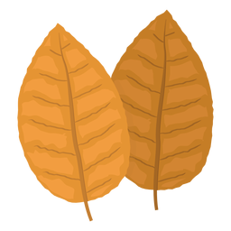 Yellow tobacco leaves illustration