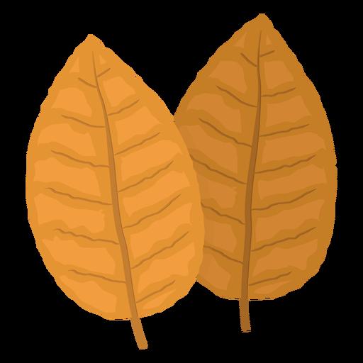 Folhas de tabaco amarelo ilustração Transparent PNG