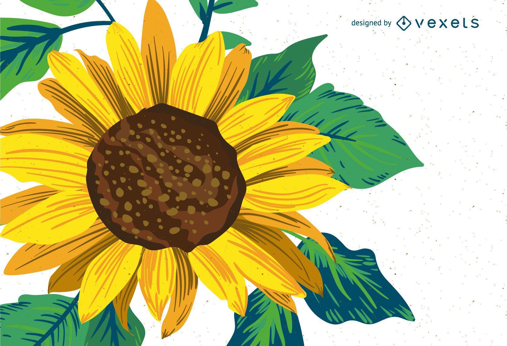 Desenho De Girassol Brilhante Baixar Vector