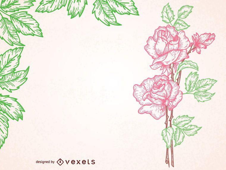 Marco ilustrado rosa de la vendimia - Descargar vector