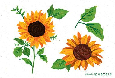 Sunflower illustrations pack