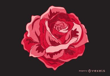 Isolated vintage rose illustration