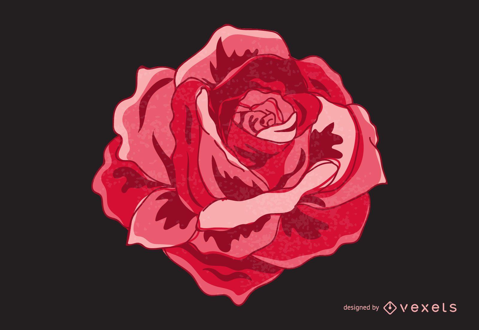 Isolated vintage rose illustration
