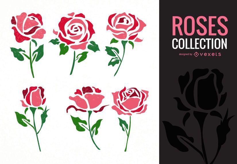 Colección de ilustración rosa