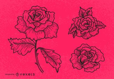 Line art rose illustration set