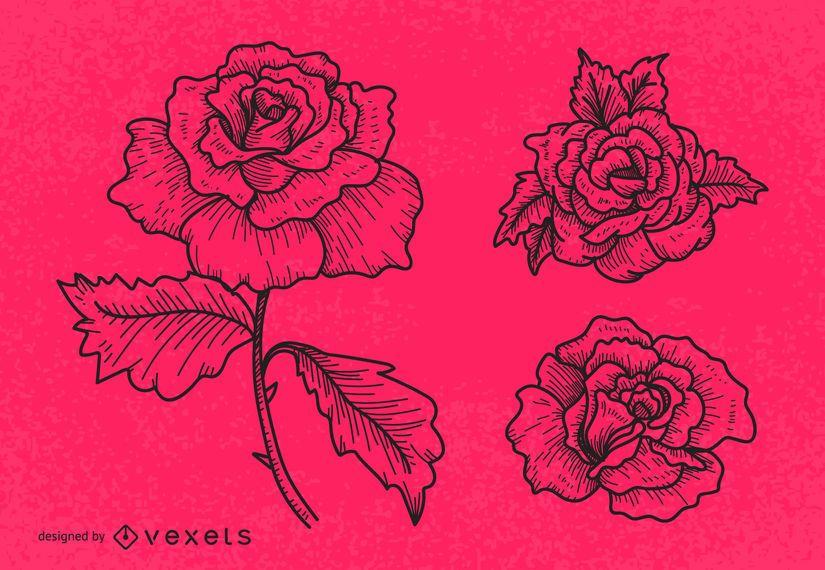 Línea arte rosa conjunto de ilustración