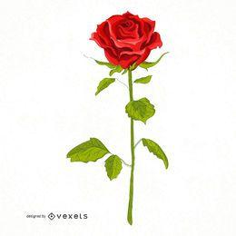 Ilustración rosa roja