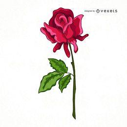 Dibujado a mano linda rosa ilustración