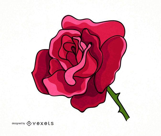 Big rose illustration