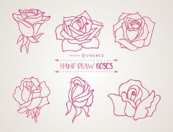 Conjunto de ilustrações de rosas de mão desenhada