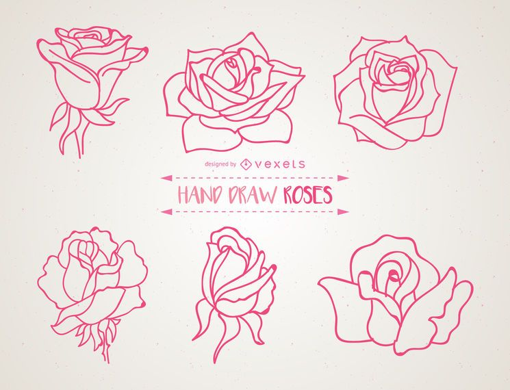 Set Of Hand Drawn Roses Illustrations Vector Download