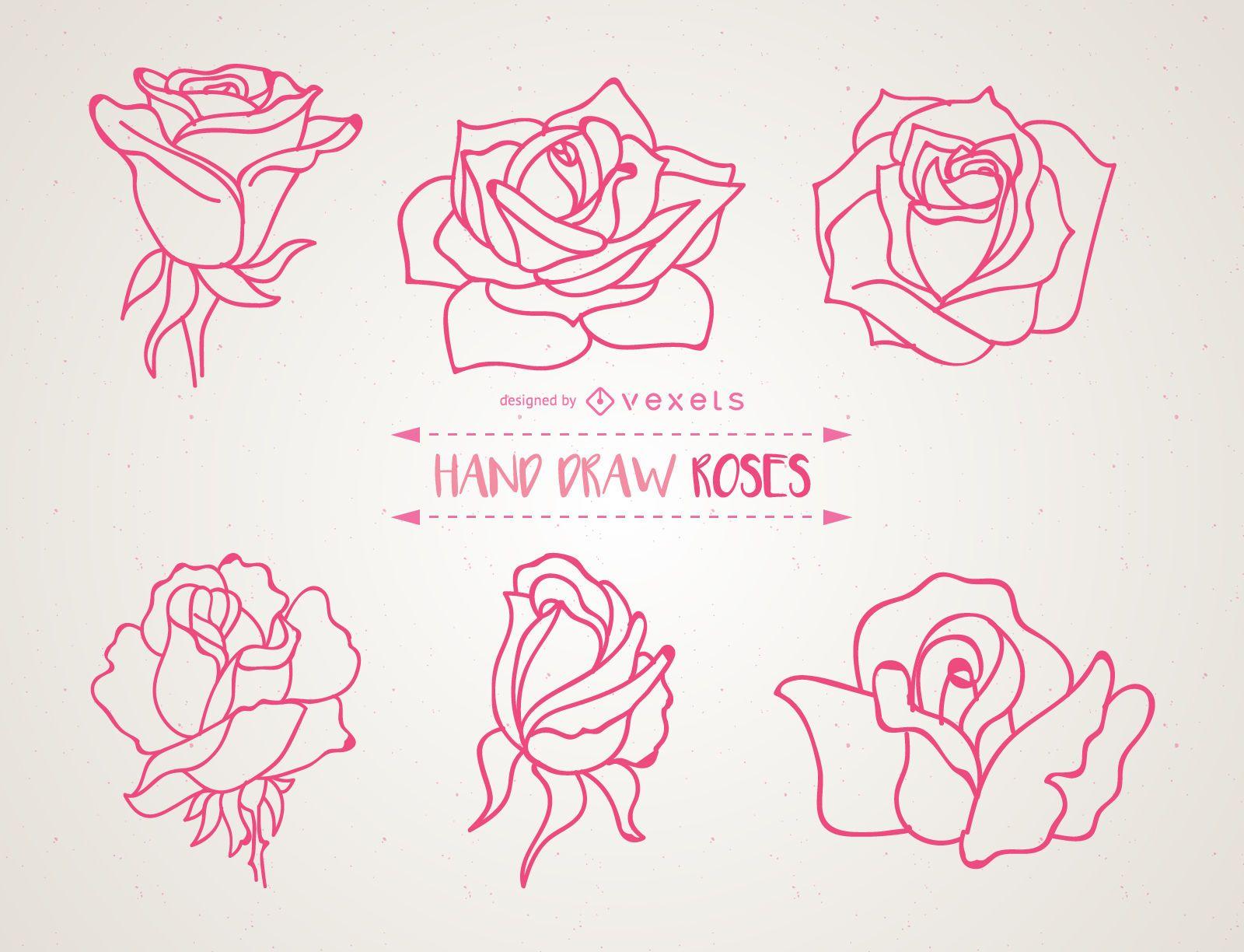 Conjunto de ilustraciones de rosas dibujadas a mano