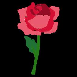 Ícone de flor rosa de florescência